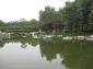 北京景观园林石-北京假山园林石-北京园林景观石价格报价
