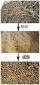 秸秆燃料颗粒机/木屑秸秆颗粒机/秸秆颗粒机生产厂家